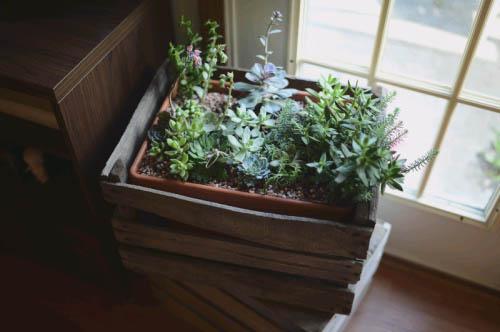 деревянные ящики в качестве цветочного горшка