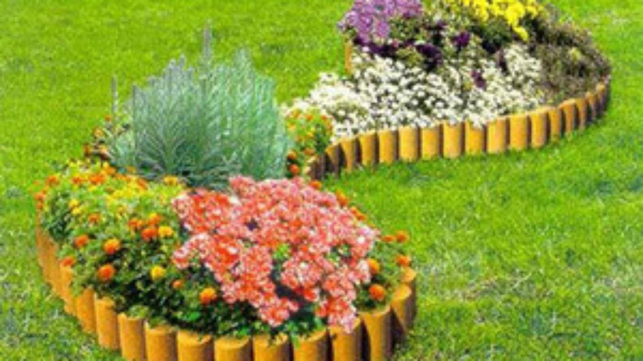 схема посадки цветов на участке
