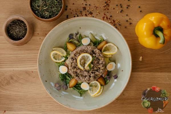 Салат с тунцом консервированным  ТОП лучших рецептов, самые вкусные и быстрые