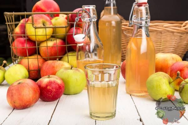 Сок из яблок на зиму  только лучшие рецепты