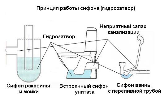 Гидрозатвор своими руками