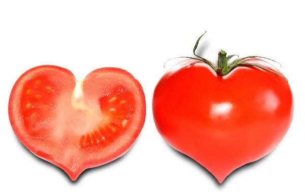 Сортовая характеристика томатов Мальва f1