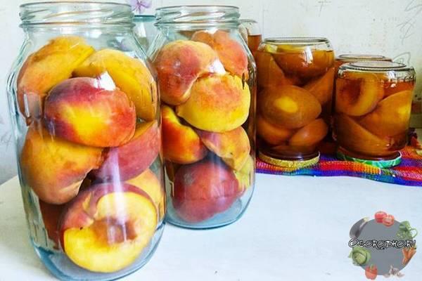 Персики в сиропе на зиму  рецепт самый вкусный, простой и быстрый, в сиропе, целиком